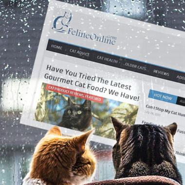 FelineOnline.com