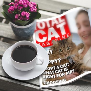 Total Cat Magazine